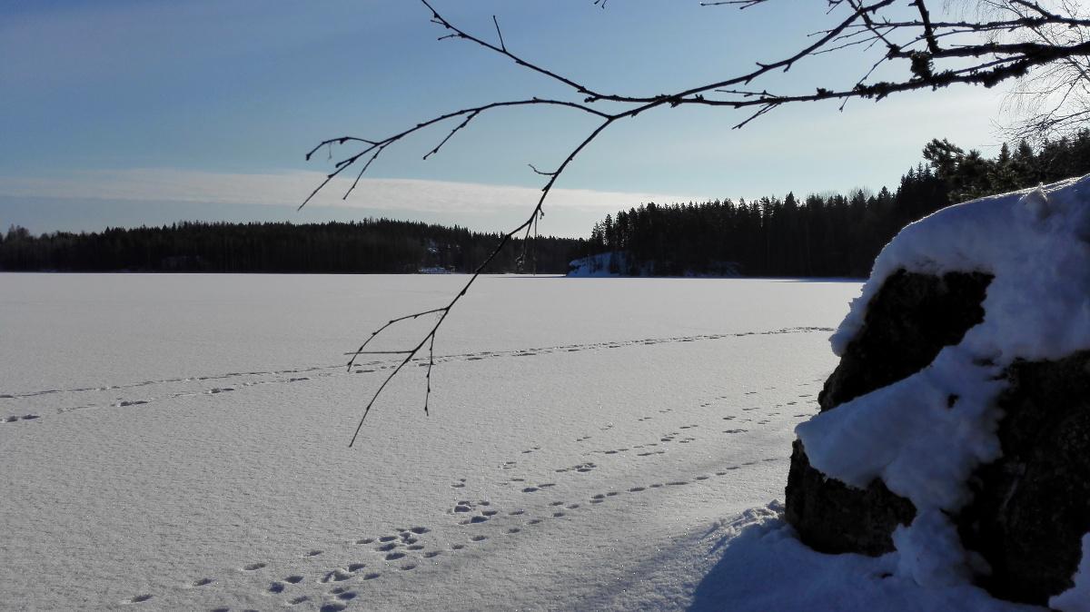 hankiaisjärvi