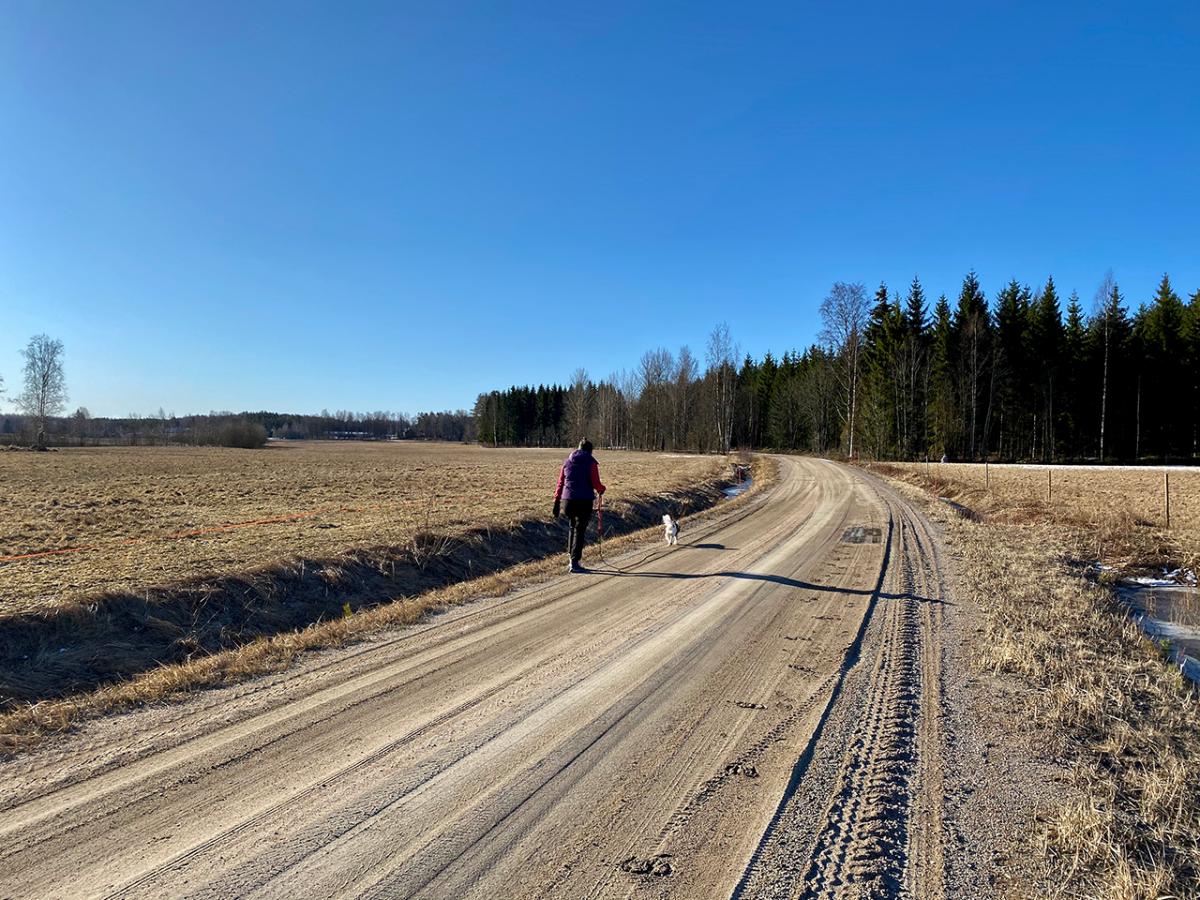 Sammaljärvi 5.4.2020